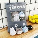 Totoro 1